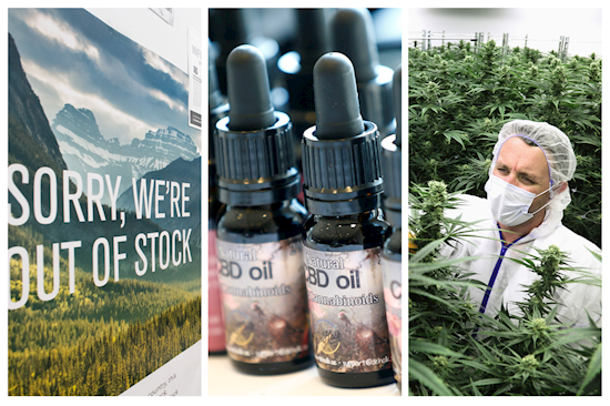 Is CBD oil legal in the Czech Republic in 2020?
